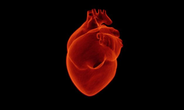 A Guide on How to Identify Signs of Heart Attack to Women